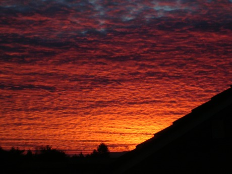 red dawn 2